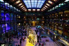 Galerie de L'Evolution / My Work on www.jorisfavraud.com Paris France, Times Square, Travel, Viajes, Trips, Tourism, Traveling