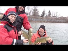 Winter Steelhead and Bass using the T Turn Bait Rig and Live Minnows - YouTube