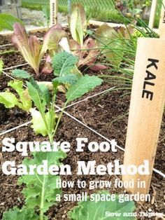 Square Foot Garden Method, grow a lot of food in a 4'x4' foot space!