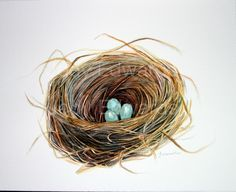 Watercolor Birds Nest Painting - Original Watercolor