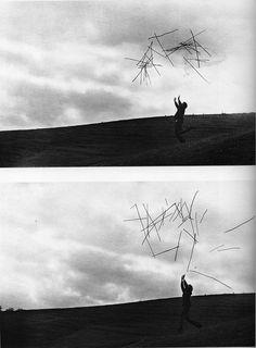 Andy Goldsworthy, Hazel stick throws, 1980