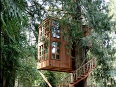 Google Image Result for http://static1.businessinsider.com/image/5036424deab8eaa90800001b-590/the-tree-house-point-hotel-in-washington-state-serves-as-a-two-story-vacation-home-30-minutes-outside-of-seattle.jpg