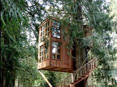 The Tree House Point hôtel
