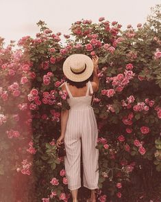 🌹 #roses #rosebush #wildflower #anthropologie #jumpsuit #garden #floral #floralaesthetic