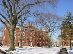 You can't come to without visiting legendary Harvard! College Campus, College Fun, Harvard Yard, Amazing Places On Earth, Exotic Beaches, Harvard University, Tourist Spots, Law School, In Boston