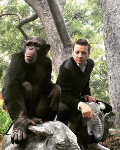 "78.2k Likes, 300 Comments - Jeremy Renner (@renner4real) on Instagram: ""Monkey business Monday! #windrivermovie #presstour #elirocks #thankyou #photoshoot #mondays"""