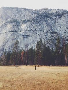 Yosemite Valley in the fall. Beautiful World, Beautiful Places, Yosemite Valley, To Infinity And Beyond, Roadtrip, Belleza Natural, Wanderlust, The Great Outdoors, Wonders Of The World