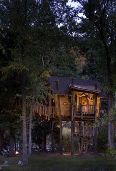 David Rasmussen tree houses.