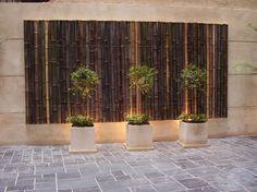 Cañas Bambu Tacuara, Colocacion Sin Cargo Techos Cercos - CAPITAL FEDERAL - en MercadoLibre