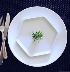 PLANT INSPIRED TABLE SETTING - HIP HIP HOME! Hip Hip, Table Settings, Dining Room, Plates, Tableware, Green, Inspiration, Inspired, Home