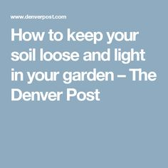 How To Keep Your Soil Loose And Light In Garden