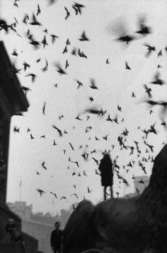 Exposition Sergio Larrain, Vagabondages à la Fondation Henri Cartier-Bresson : Trafalgar Square. Londres, 1958 – 1959 © Sergio Larrain/Magnum Photos