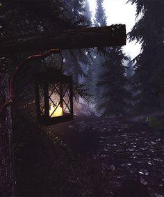 dark forest path tumblr - Google Search