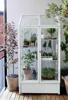 Balkonlara Sera Geldi! Apartmanlarda yaşayan bizler doğaya duyduğumuz özlemi balkon bahçeleri ile, saksılarda bir nebze olsun gidermeye çalışıyoruz. N...