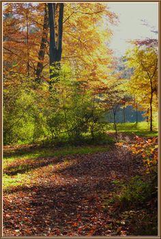 'Oktoberleuchten (3)' von Rudolf Büttner bei artflakes.com als Poster oder Kunstdruck $18.02