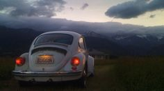 "Rio Rossellini drove her 1973 Volkswagen ""Super Bug"", pictured before the earthquakes, to Kaikoura to check on her ..."