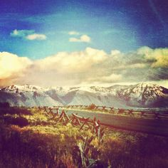Driving through Jackson Hole, Wyoming