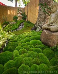 15 Most Popular Asian Garden Design Inspiration for Your Backyard - Home Bigger Japanese Garden Landscape, Small Japanese Garden, Japanese Garden Design, Japanese Gardens, Zen Garden Design, Moss Plant, Meditation Garden, Asian Garden, Garden Stones