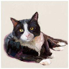 49 Feline Friends Cat Art Ideas In 2021 Cat Art Feline Art