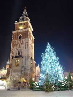 Christmas Tree in Krakow, Poland