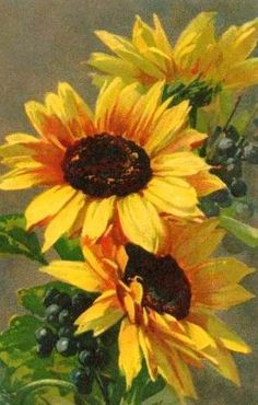 wonderful from each other canvas painting summer, aesthetic painting, painting techniques, chalk paint colors, sunflower painting ideas. Check out other wonderful examples Sunflower Pictures, Sunflower Art, Art Floral, Watercolor Flowers, Watercolor Art, Sunflowers And Daisies, Paintings Of Sunflowers, Art Sur Toile, China Painting