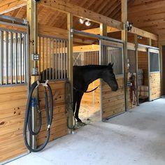 Essex Standard Stall Front with Grill Top Door #ramm #horsestalls #essex #horse #stalls #equine #horses #barn #farm #kitstalls #diy #barndiy #farmdiy