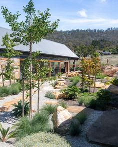 (re)barn 2019 Tasmanian Architecture Awards is part of Waterwise garden - Australian Garden Design, Australian Native Garden, Australian Bush, Bush Garden, Terrace Garden, Country Landscaping, Backyard Landscaping, Landscaping Ideas, Backyard Ideas