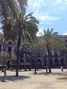 Barcelone, placa Reial, Espagne