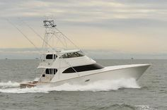 """Enter The """"Lion's Den"""" At Your Own Risk 