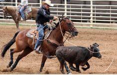 Team Roper, Cowboy Up, Barrel Racing, Show Jumping, Dressage, Cross Country, Farm Life, Rodeo, Farm Animals