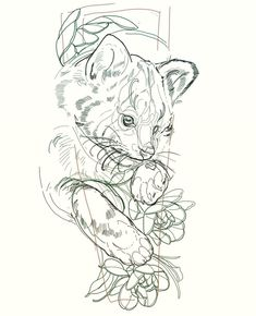 One hour quick red panda layout . for a couple of weeks time . tiniest of arms x Panda Sketch, Panda Drawing, Arm Tattoo, Body Art Tattoos, Animal Drawings, Cool Drawings, Animal Stencil, Tattoo Flash Art, Desenho Tattoo