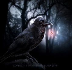 Dark Gothic Digital Artworks Consuelo Parra na Stylowi.pl
