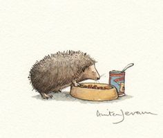 Illustration by Anita Jeram Hedgehog Illustration, Children's Book Illustration, Anita Jeram, Evans Art, Hedgehog Art, Cute Art, Illustrations Posters, Childrens Books, Penny Black