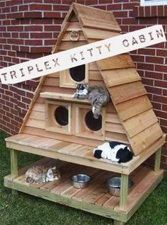 Triplex Kitty Cabin