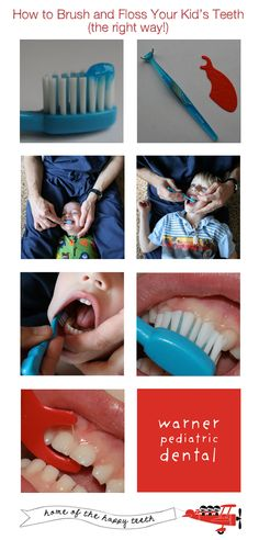 How to Brush and Floss Your Kid's Teeth (the right way!)  Just made this for Doug's blog.  Might print it out and put it up on the wall for his patients!