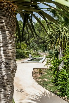 PURE HOUSE IBIZA is an amazing Boutique and Lifestyle Hotel in Ibiza island in Spain. Just a Paradise if you asking from me. Natural Interior, Natural Home Decor, Ibiza Style Interior, Ibiza Island, Hotel Ibiza, Dream Beach Houses, House By The Sea, Villa, Architecture Plan