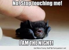 I am the night!!