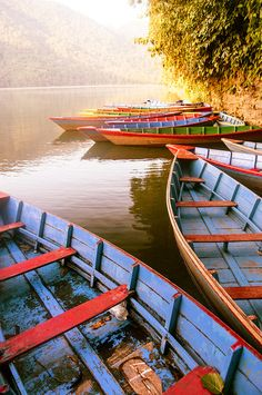 Phewa Lake, Pokhara Valley, Nepal Basically lived here on the weekends. Nepal Culture, Float Trip, Asia Travel, Travel Nepal, Bhutan, Culture Travel, Where To Go, The Great Outdoors, Wonders Of The World