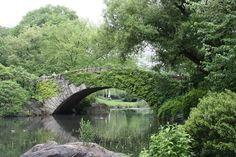 Central Park, New York City You You would never know you were in the middle of NYC. This is the most amazing Park, so many different areas to explore.