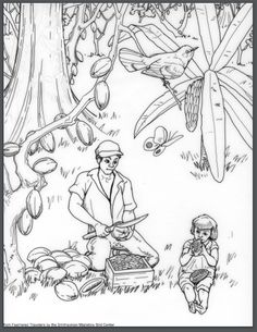 bird migration coloring pages - photo#27