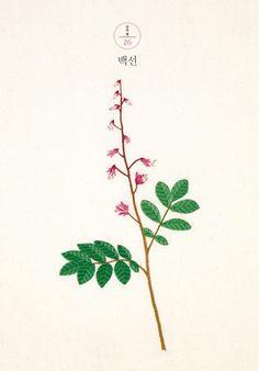 야생화 자수 3 봄에 볼 수 있는 우리 꽃 [ 2015 / 김종희 / 팜파스 ]
