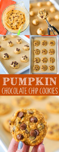 These Pumpkin Chocolate Chip Cookies are so easy to make and perfect for fall. Soft pumpkin cookies with a hint of cinnamon and pumpkin pie spices, and loaded with milk chocolate chips. Pumpkin Chocolate Chip Cookies These Soft Pumpkin Cookies, Pumpkin Chocolate Chip Cookies, Pumpkin Dessert, Pumpkin Recipes, Fall Recipes, Cookie Recipes, Fall Desserts, Delicious Desserts, Yummy Food