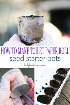Let me show you how to make toilet paper roll seed starter pots! They are free a. - Let me show you how to make toilet paper roll seed starter pots! They are free a. Starter Garden, Paper Pot, Paper Paper, Growing Tomatoes In Containers, Starting Seeds Indoors, Seed Paper, Paper Roll Crafts, Growing Seeds, Toilet Paper Roll