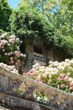 Lovely old window in the Gardens at Quinta da Regaleira in Portugal