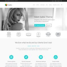 Salbii Multi-Purpose WordPress Theme | Best WordPress Themes 2014