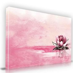 Pink Lotus Flower  Canvas Artwork  Canvas Print Artwork from Maxwell Dickson Creative Design Wall Art for Sale