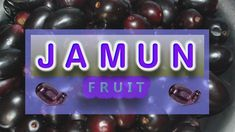 The jamun fruit has a sweet and sour flavor and is known to be quite astringent, although this taste can vary depending on when you pick the fruit from. While it has been a part of cultural, religious, and culinary traditions in certain parts of the world for centuries, it is only recently becoming popular in the rest of the world. Noni Fruit, Netflix Gift, Tarot Gratis, Dog Food Brands, Delicious Fruit, Easy Food To Make, Cool Things To Buy, Stuff To Buy, Kombucha