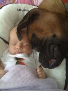 I can just see Oz doing this with Baby R when he gets here