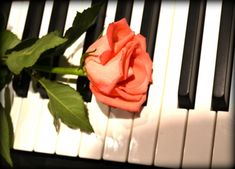 It is very important to take piano lessons in order to play the piano. You have to learn to read piano music if you plan to be a serious piano player. If you try to look into history, you will notice that most of the great piano p