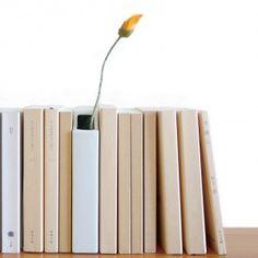 Porcelain planter hanabunko  because every bookshelf needs vegetation.